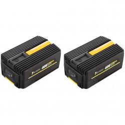 Pack 2 batteries GT ELEC 40 Volts : 2 x capacité 2 Ah
